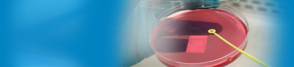 Averica Microbiology & Sterility Testing