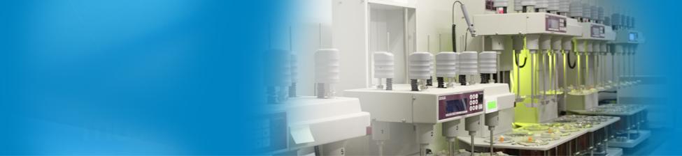 Averica Quality Assurance Services